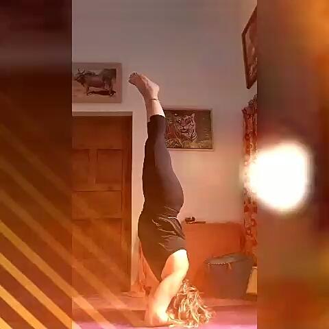 clase de yoga în varicoză)
