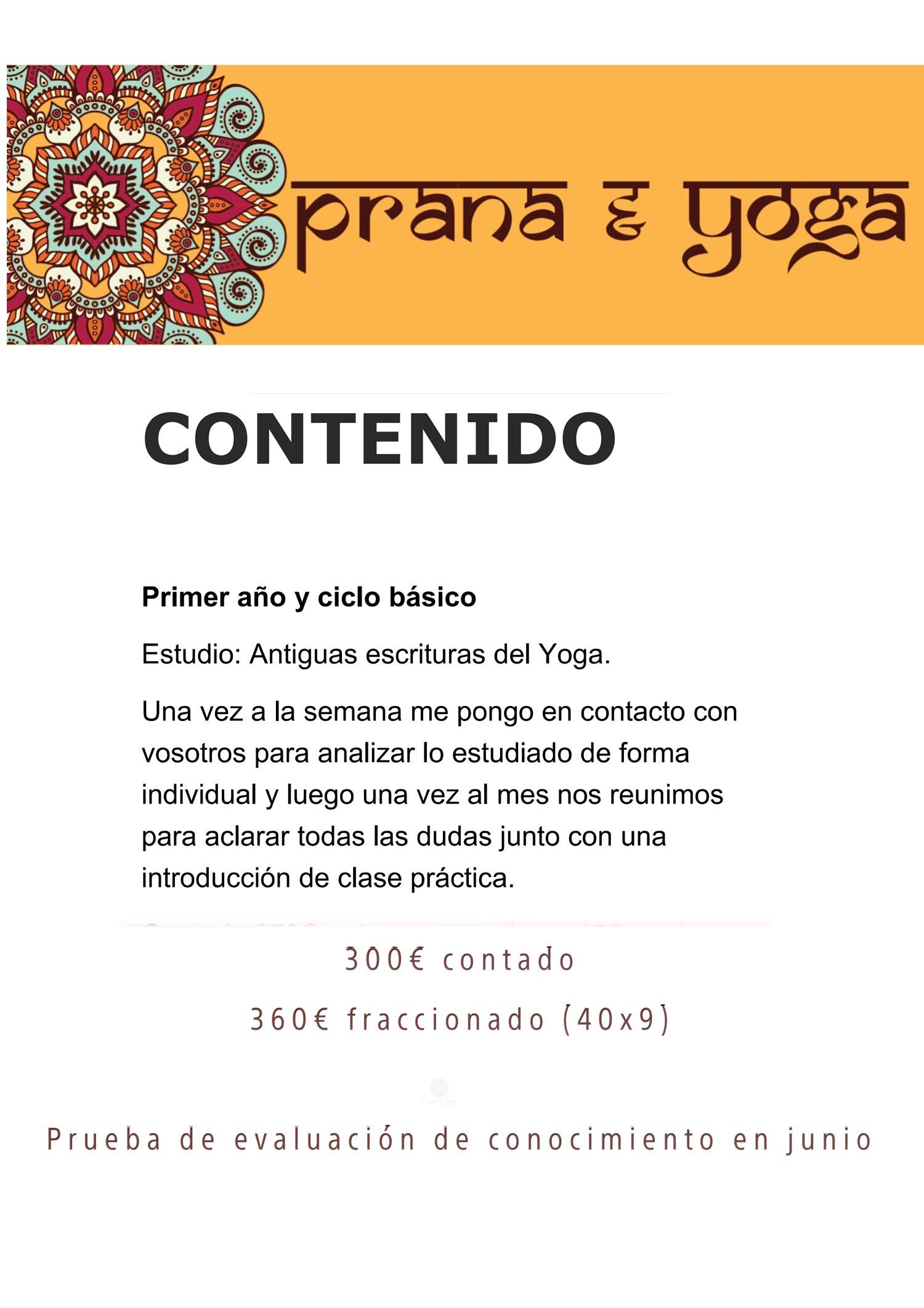 curso_formacion_yoga_2