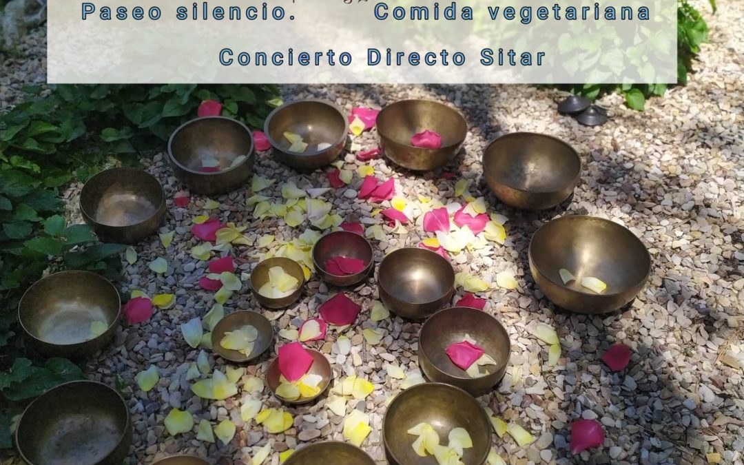 Octubre 2020: [ SUSPENDIDO ] Retiro de Silencio en Guadalajara